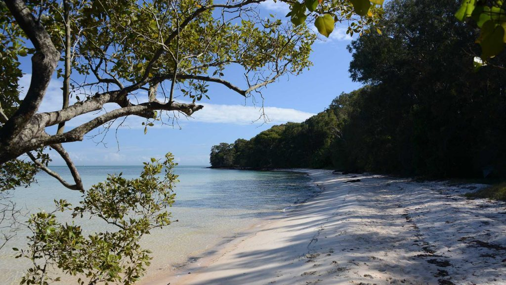 Dunwich beach in front of MBRS, North Stradbroke Island, © copyright, Lucy Trippett, Moreton Bay Research Station
