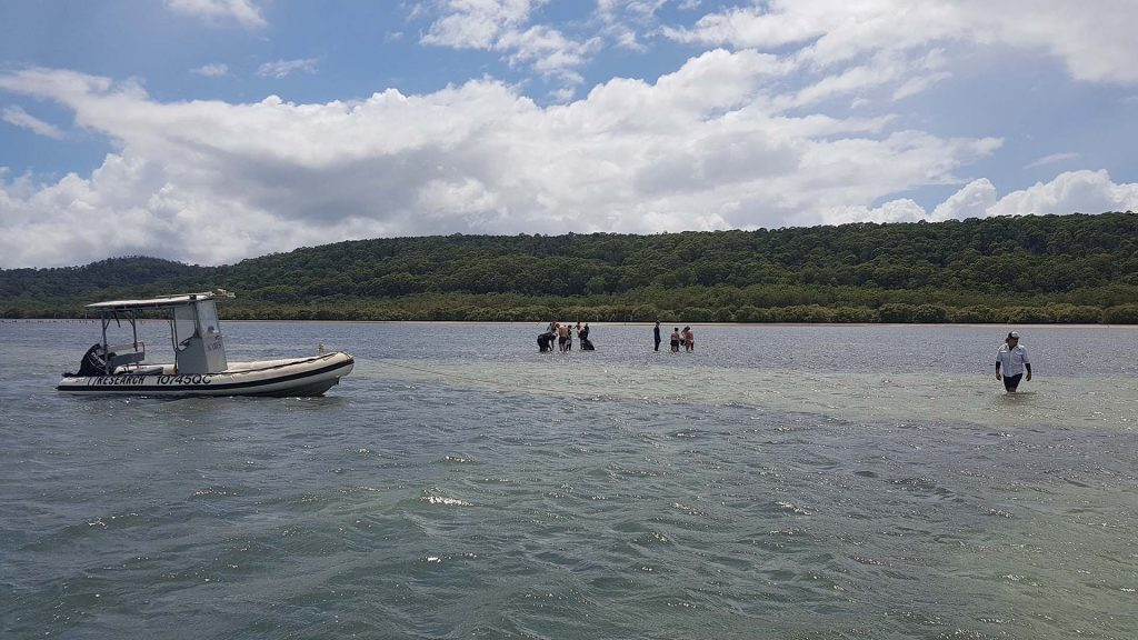 Estuarine Ecology class sampling seagrass 2, Price Anchorage, Stradbroke Island, © copyright 09-02-2018, Jody Kreuger, Jody Kreuger, Boating and Diving Officer, Griffith University