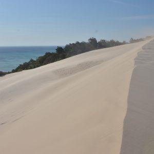 Wind blowing sandbanks, Velella, Moreton Island, © copyright September 2017, Chris Roelfsema, UQ Lecturer