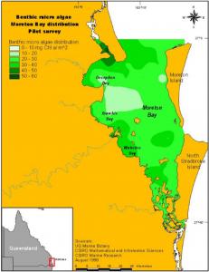 Benthic microalgae distribution across Moreton Bay
