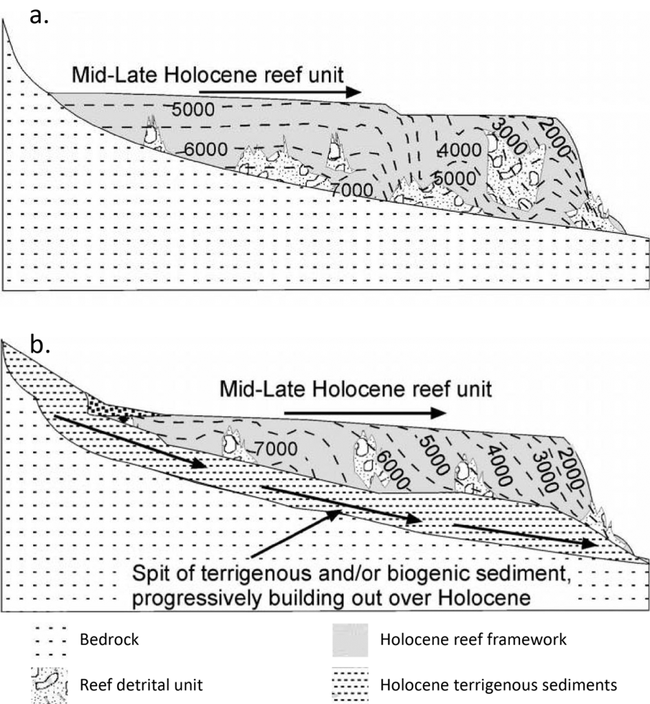Conceptual schematics of Moreton Bay nearshore reef development through the Holocene