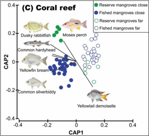 Coral reef differences in composition of fish assemblages between marine reserves and fished locations in Moreton Bay