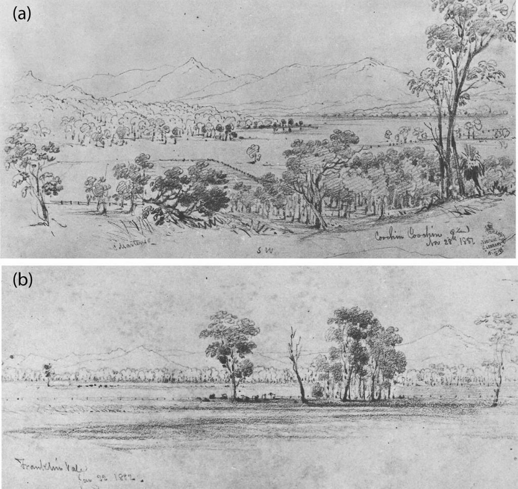 1850s impressions of Moreton Bay Hinterland