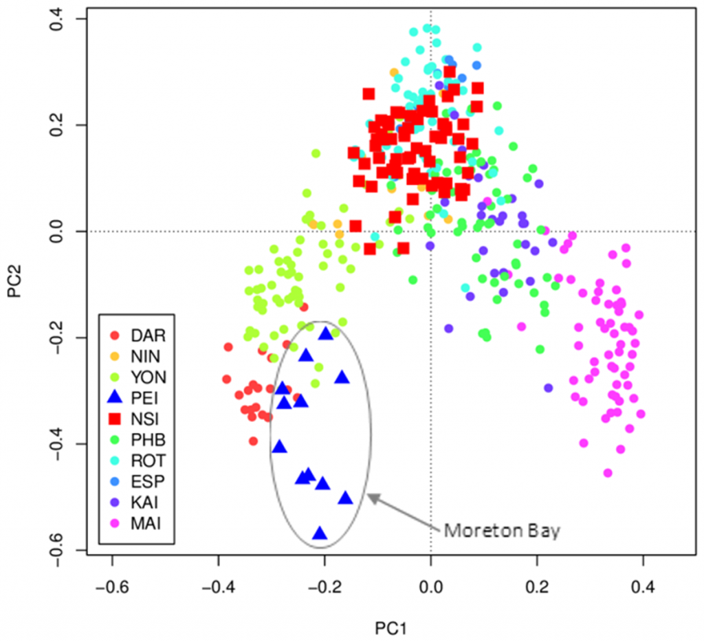 PCA analysis of Moreton Bay copepods compare with other Australia locations