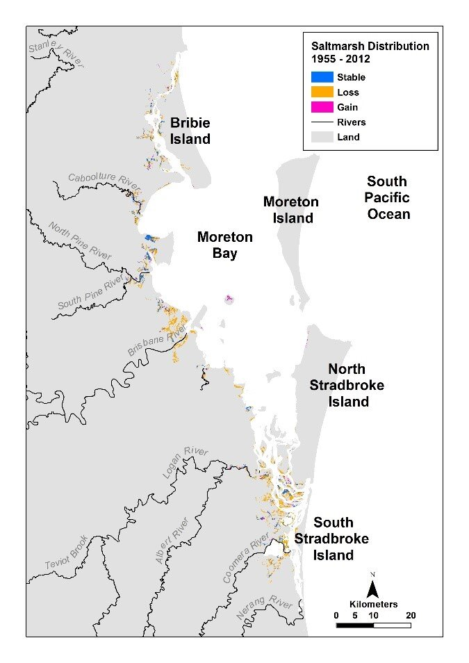 Figure 2 An assessment of saltmarsh areas from 1955 to 2012