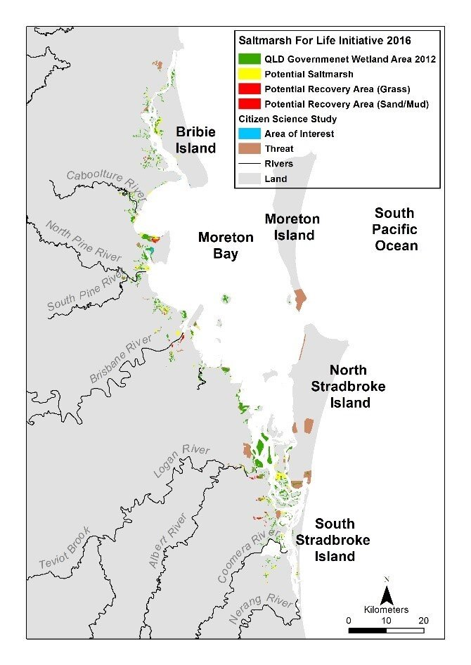 Potential saltmarsh recovery areas in Moreton Bay