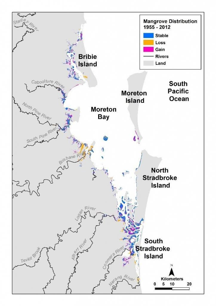 Loss and gain of mangrove communities in the Moreton Bay region
