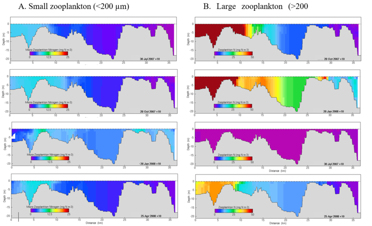 Monthly biomass estimates of small zooplankton in Moreton Bay