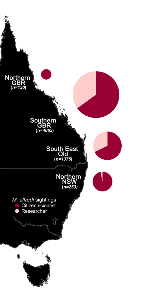 Proportion of reef manta ray (Mobula alfredi) sightings along the eastern Australian coast contributed by citizen scientists and researchers. Pie chart size represents relative number of contributions at different locations