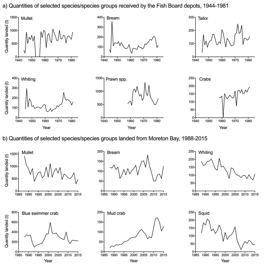 Thur1 Quantities of selected species or species groups received by the Fish Board depots1044 to 1981 and groups landed from Moreton Bay 1988 to 2015