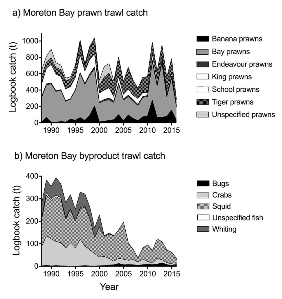 Thur2 Moreton Bay prawn trawl catch and by product trawl catch