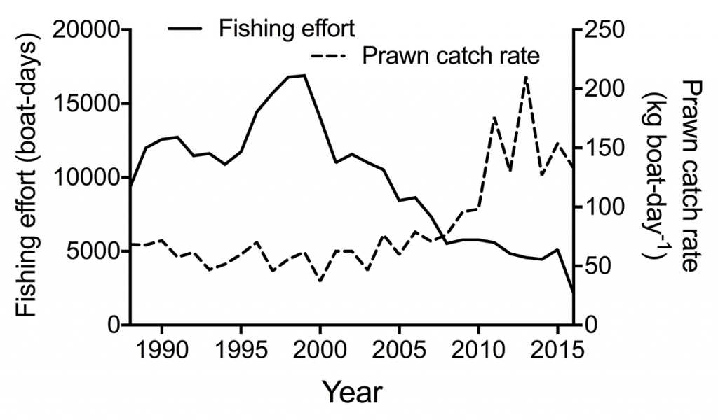 Thur3 Fishing effort and Prawn catch rate in Moreton Bay