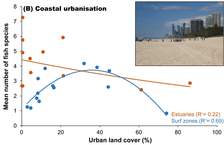 Effects of coastal urbanisation on fish
