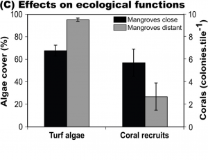 Effects on ecological functions