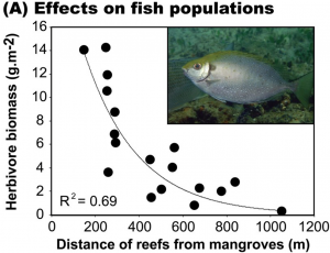 Effects on fish populations