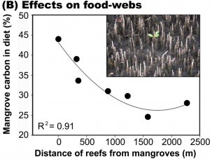 Effects on food-webs