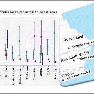 Current-use pesticides measured across three estuaries